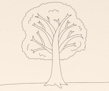 Cum Se Deseneaza Un Copac By Oana